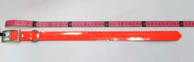 Collier BIOTHANE 50cm
