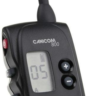 Collier NUM'AXES Canicom 800 .SUR COMMANDE.